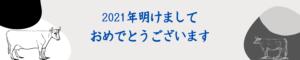 マヤ暦2021運勢